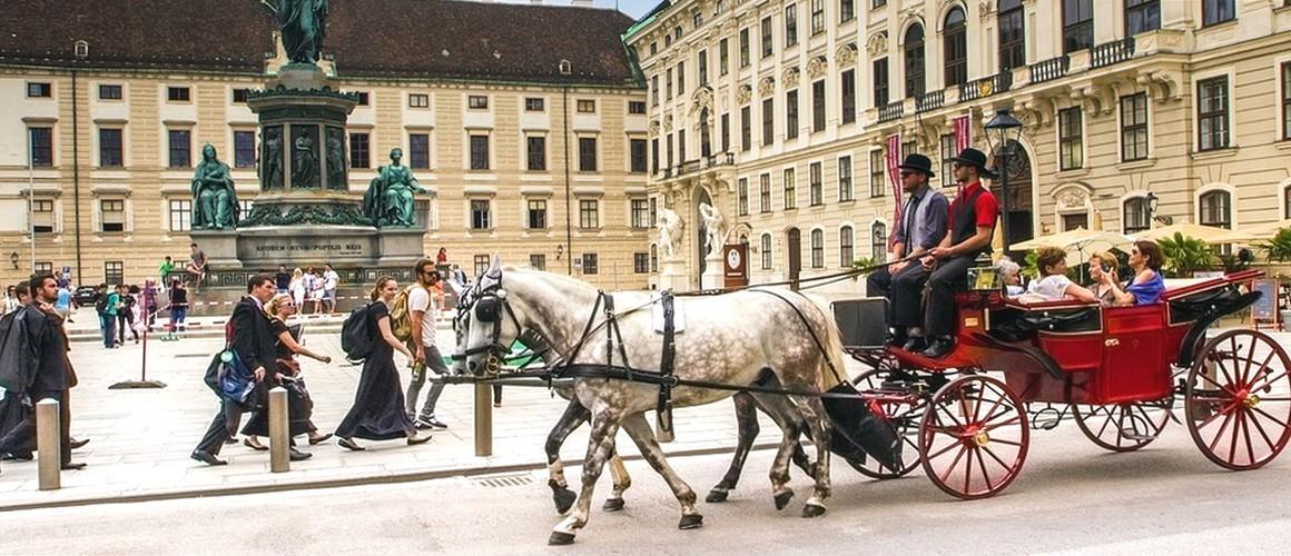 vienna-1544015_960_720.jpg