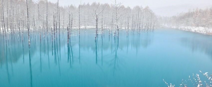 푸른연못.jpg