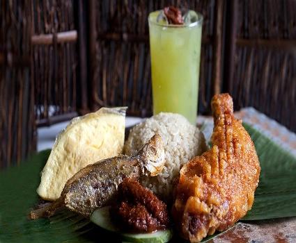 닭고기밥.png