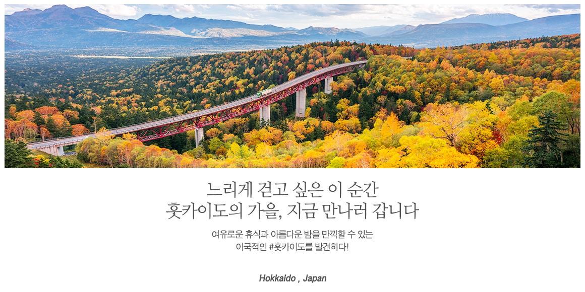 20180828_북해도-4일_상단-메인.jpg