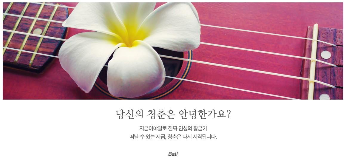 20181121_다시-청춘-발리_메인상단_최종.jpg